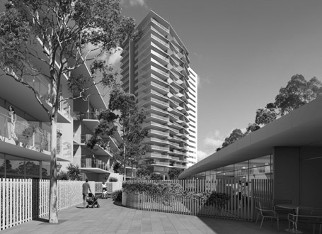 stanisic_lane cove_02